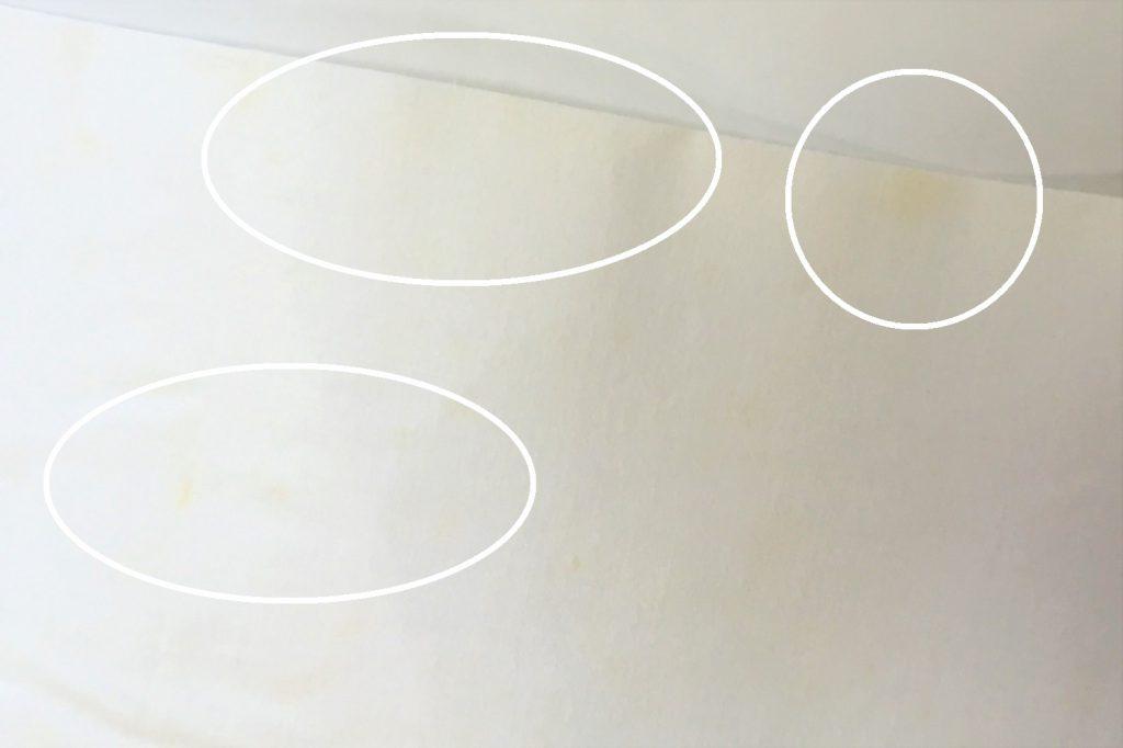 帯の芯地にカビがでている写真